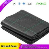 China AGU ground cover mesh factory cheap price PP weed mat