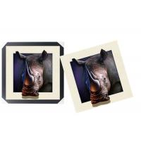 Cheap Lovely Cute Animal Art Printing 5d Lenticular Picture / HD Animal Pictures for sale