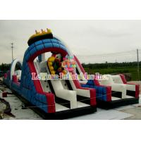 Best Wild Tunnel Crazy Roller Coaster / Climb And Slide European Standards wholesale