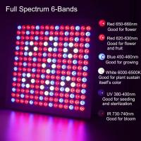 Best Waterproof Full Spectrum LED Grow Lights With 660nm - 450nm Wavelengh wholesale