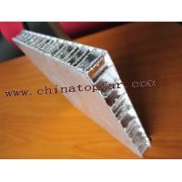 Cheap Aluminium Honeycomb core panel for ship, marine Aluminium Hongeycomb panel for sale