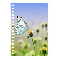 Cheap 3D Lenticular Plastic Hard Cover Spiral Notebook For Office & School / for sale