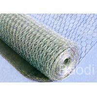 Best Poultry Fencing Chicken Wire Fence Panels , Electric Zinc Coating Chicken Wire Cage wholesale