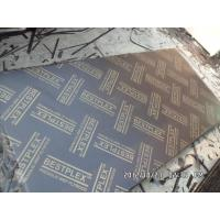Best  brown/black Film faced plywood with poplar core  wholesale