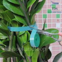 Best Double Sided Reusable Cable Ties Hook And Loop DIY Cutting Adjustable Plant Ties wholesale