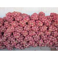 Buy cheap Fresh red onion, organic rose onion peeled spicy vegetable, medium size,Chinese onion from wholesalers