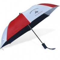 Best 2-fold Auto Open Umbrella with Zinc-plated Metal Ribs wholesale