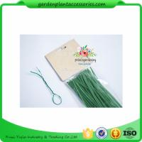 Best Green Tree Climbing Garden Plant Ties , Plastic Tree Support Ties wholesale