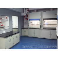 Best Laboratory Walk In Fume Hood With Constant Air Volume Exhaust System wholesale