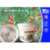 Best Aubergine Granule Systemic Fungicides With Protective And Curative Action wholesale