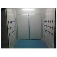 Best Anti-Static Class 10000 Cargo Air Shower Tunnel For Cosmetic Workshop , Sandwich Panel wholesale