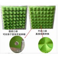 Best Customized Size Plant Grow Bags Green Bags For Plants 6 Years Lifetime wholesale