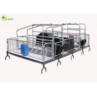 Best Automatic Pig Farrowing Crate , Pig Farrowing Pen Modern System wholesale