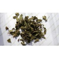 Best Rabdosia rubescens leaves Tea Herba Rabdosiae dried well good for throat release pain Dong ling cao wholesale