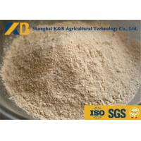 Best Non GMO Organic Brown Rice Protein Powder OEM Brand With 20kg Plastic Bag Package wholesale