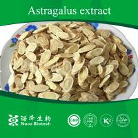 Best Huangqi root Extract from China wholesale