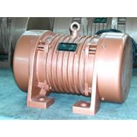 China Two Pole Electric Vibrating Table Motor For Vibrating Screen on sale