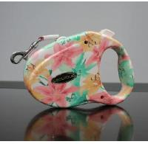 Best Retractable Dog Leash (PB03M) wholesale