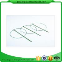 Best 3 Rings Green Garden Plant Supports , Circular Plant Supports Plastic Coated wholesale