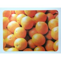 Cheap Animal 3D Lenticular Plastic Placemat For Promotion 28 * 38cm for sale