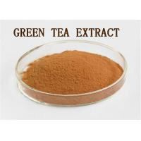Best Brown Natural Supplement Raw Materials Polyphenols Green Tea Extract Powder wholesale