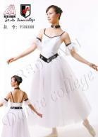 Best Adult Ballet Tutu wholesale