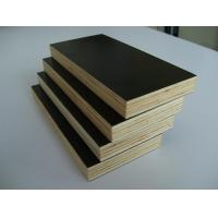 Best 18mm black  Film faced plywood with poplar core wholesale