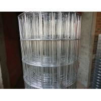 Industrial Galvanized Welded Wire Mesh Rolls 1M * 50M Size For Concrete Footpaths