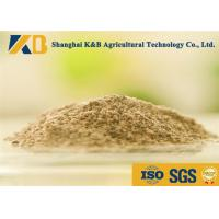 Best Livestock Fish Bone Meal / Fish Powder Fertilizer Maintain Normal Metabolism wholesale