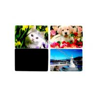 Best Cartoon PP PET PVC Image 3D Lentiuclar Magnets UV Printing Souvenir wholesale