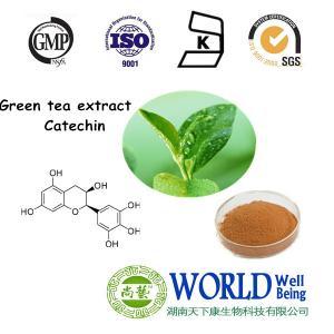 China Green Tea Extract tea Polyphenols, Green Tea Extract tea Polyphenols, Green Tea Extract tea Polyphenols on sale