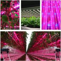 Buy cheap T8 4 Feet Hydroponic Led Grow Lights For Vegetables / Flower , AC85-265V Input from wholesalers