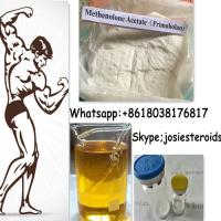 Best Methenolone Enanthate Testosterone Primobolan Steroids For Muscle Growth 303-42-4 wholesale