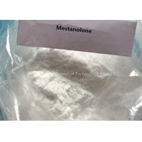 Bodybuilding Powder Steroids Mestanolone with Safe Shipping 521-11-9