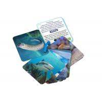Best Animial Image 3d Lenticular Sheets Learning card For Children With Alphabet wholesale