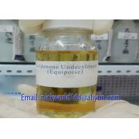 Best CAS 315-37-7 Injectable Anabolic Steroids Testosterone Enanthate 300mg wholesale