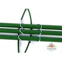 Cheap Circular Plant Support Stakes for sale