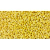 Best EOE Stackable Canned Sweet Corn Kernel Super Sweet 425g with Private Label wholesale