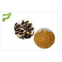 China Light Yellow Plant Extract Powder Natural Ingredient Milk Thistle Extraction on sale