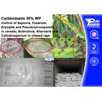 Best CARENDAZIM 50% WP Plant Fungicide Control Of Septoria , Fusarium , Erysiphe wholesale