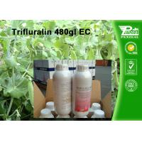 Cheap Weeds And Grass Control Selective Herbicide Trifluralin 480g/L EC Cas No. 1582 for sale