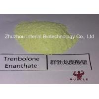 China 99.48% Purity Tren Anabolic Steroid Trenbolone Enanthate/Parabolan for Muscle Gain Fitness on sale