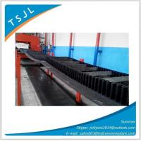 Best Sidewall Conveyor Belt wholesale