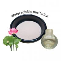 China Natural Weight Loss Additives Nuciferine 2% 5% For Health Products Oil Exclusion on sale