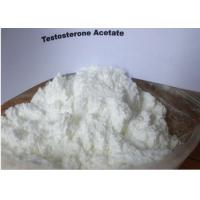 Quality Fast Acting Testosterone Acetate , Testosterone Anabolic Steroids For Muscle Gain wholesale