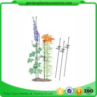 """Cheap Single Grow Garden Plant Supports / Spiral Plant Support 4"""" Z - Rings for sale"""