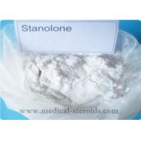 Best Male Enhancement Steroids Injectable Anabolic Steroids Articles Stanolone Powder CAS 521-18-6 wholesale