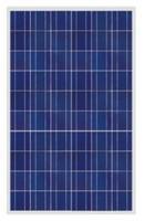 Best Poly Solar Panel (230W) wholesale