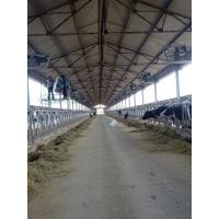 Best Dairy cowhouse ventialtion exhaust fan wholesale