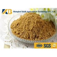 Best Purity Easy Absorb Fish Powder Fertilizer / Fish Meal Feed For Shrimp wholesale